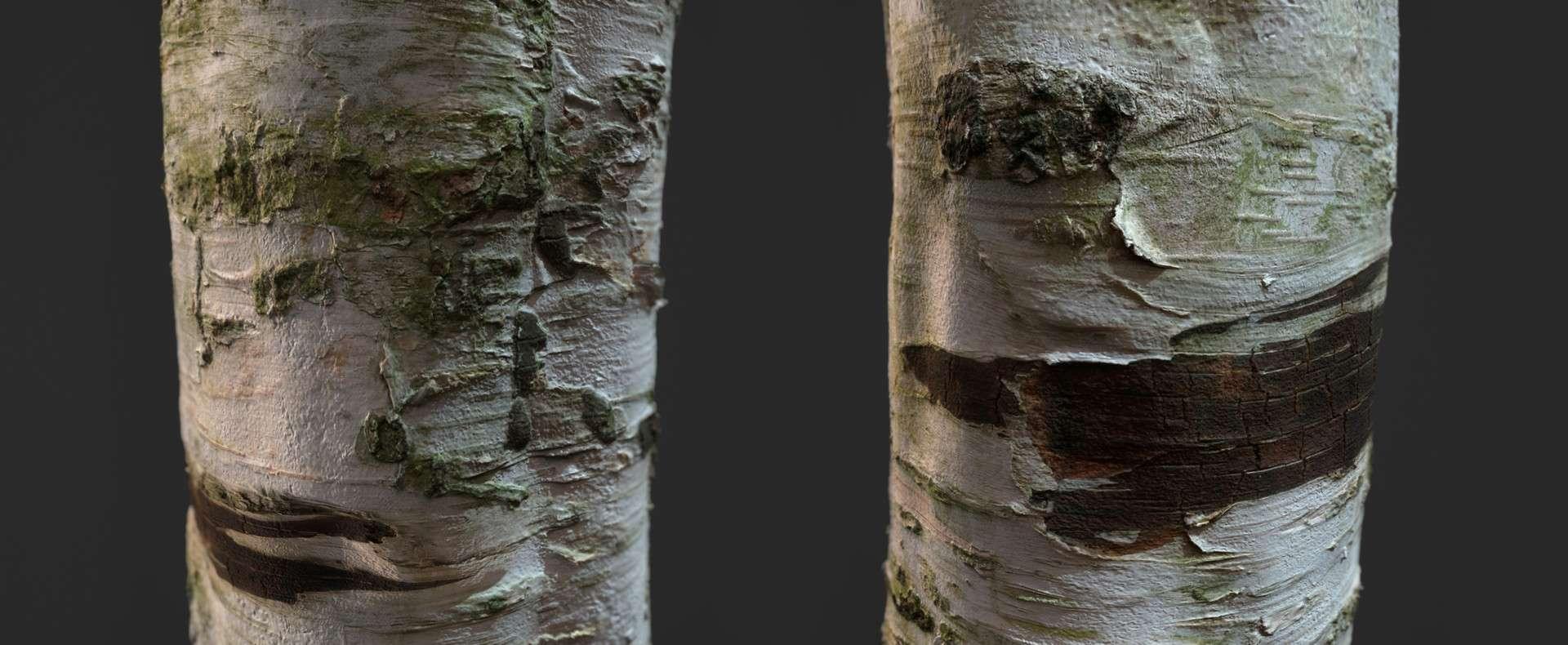 Free Photogrammetry Tile Textures