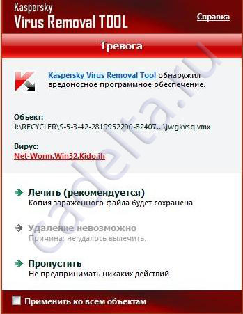 Рис.3 Найден вирус